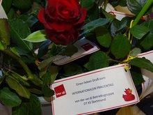 Internationaler Frauentag bei der DTKS Dortmund